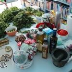 Dzika-kuchnia_foto_01